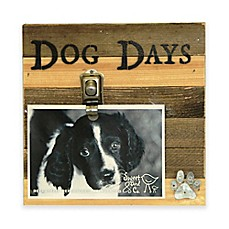 image of Sweet Bird Dog Days 8
