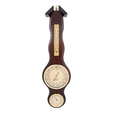Bios Weather™ Pendant Barometer