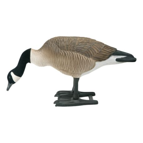 Bigfoot B2 Lifesize Canada Goose Decoys - Feeder
