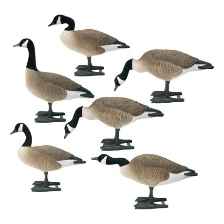 Bigfoot B2 Lifesize Canada Goose Decoys - Variety