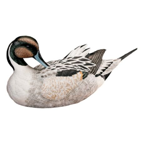 White River™ Hand-Painted Decoys - Pintail