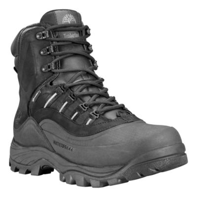 09d2e4fe558 Timberland™ Men's Chocorua Trail 2.0 8-Inch Insulated Waterproof ...