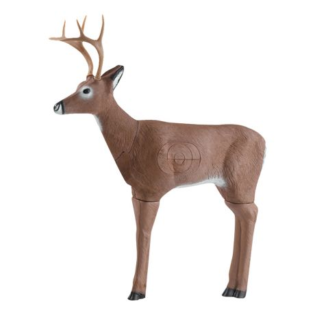 Cabela's 3-D Targets - Whitetail