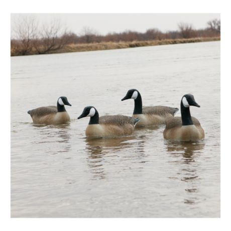 Cabela's Northern Flight Canada Goose Floating Decoys