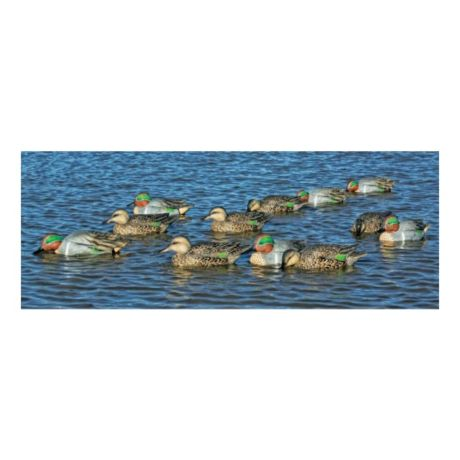 Avian-X Green Wing Teal Decoys - Six-Pack