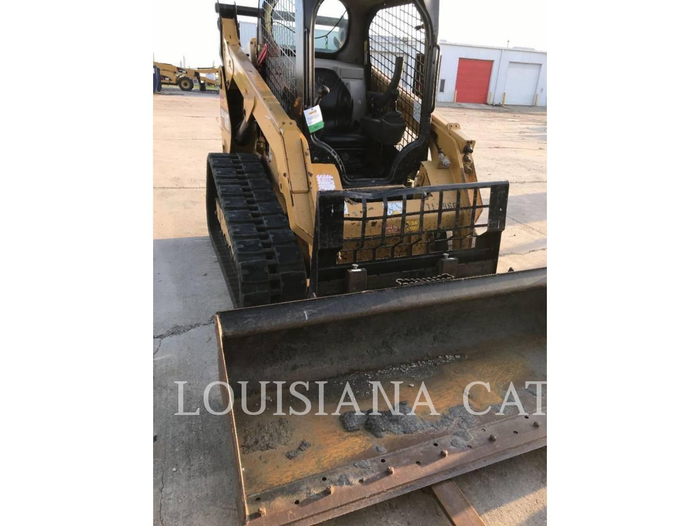 Louisiana Cat - Harvey Canal | Louisiana Cat