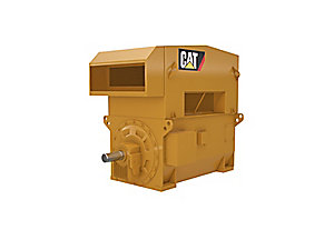 CN3086 Electric Motor for Gas Compression
