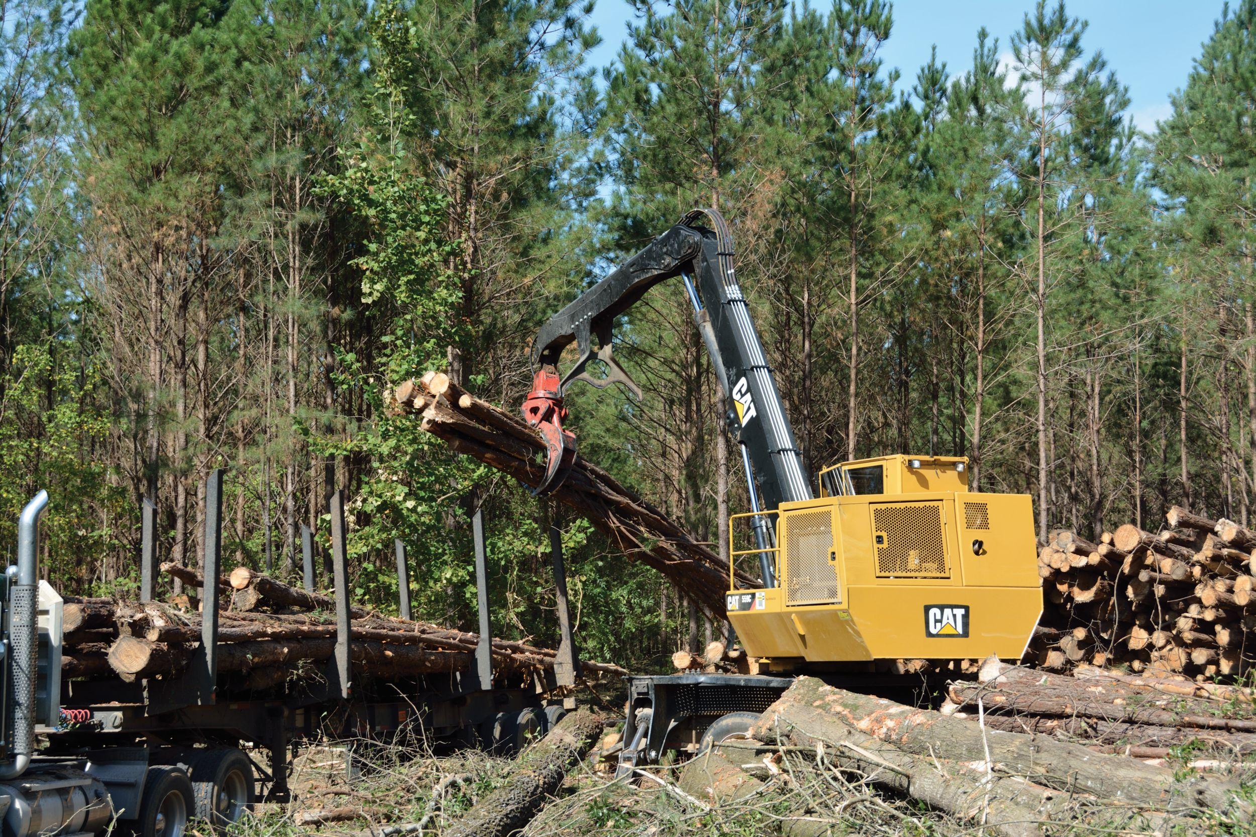 Workhorses of the Woods   Biomassmagazine.com   Cat Forestry Equipment