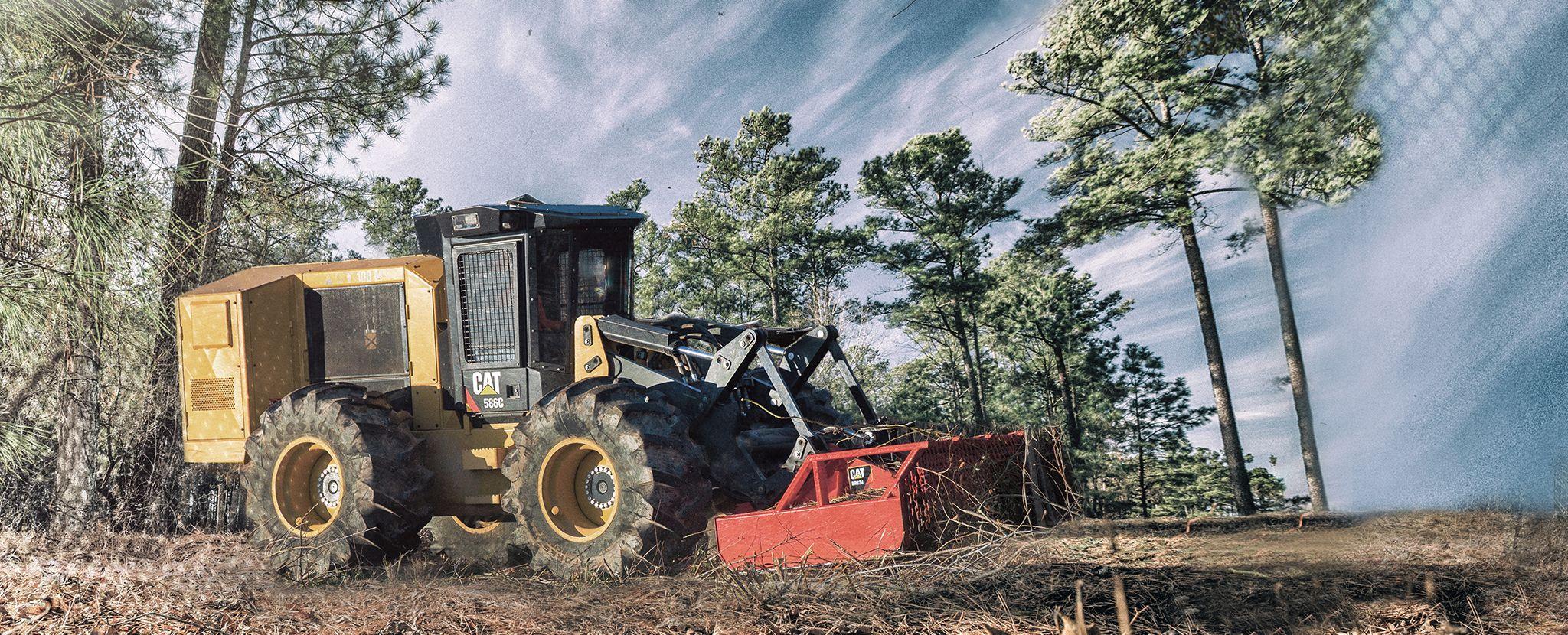 17 сентября – День работников леса и лесоперерабатывающей промышленности