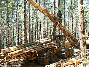 574 Forwarder