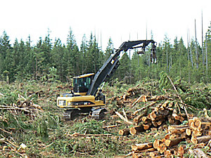 324D FM Forest Machines