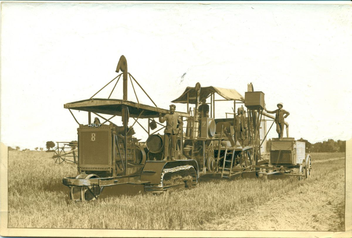 Holt 60 tractor pulling a Holt Combine Harvester in North Africa, 1912.