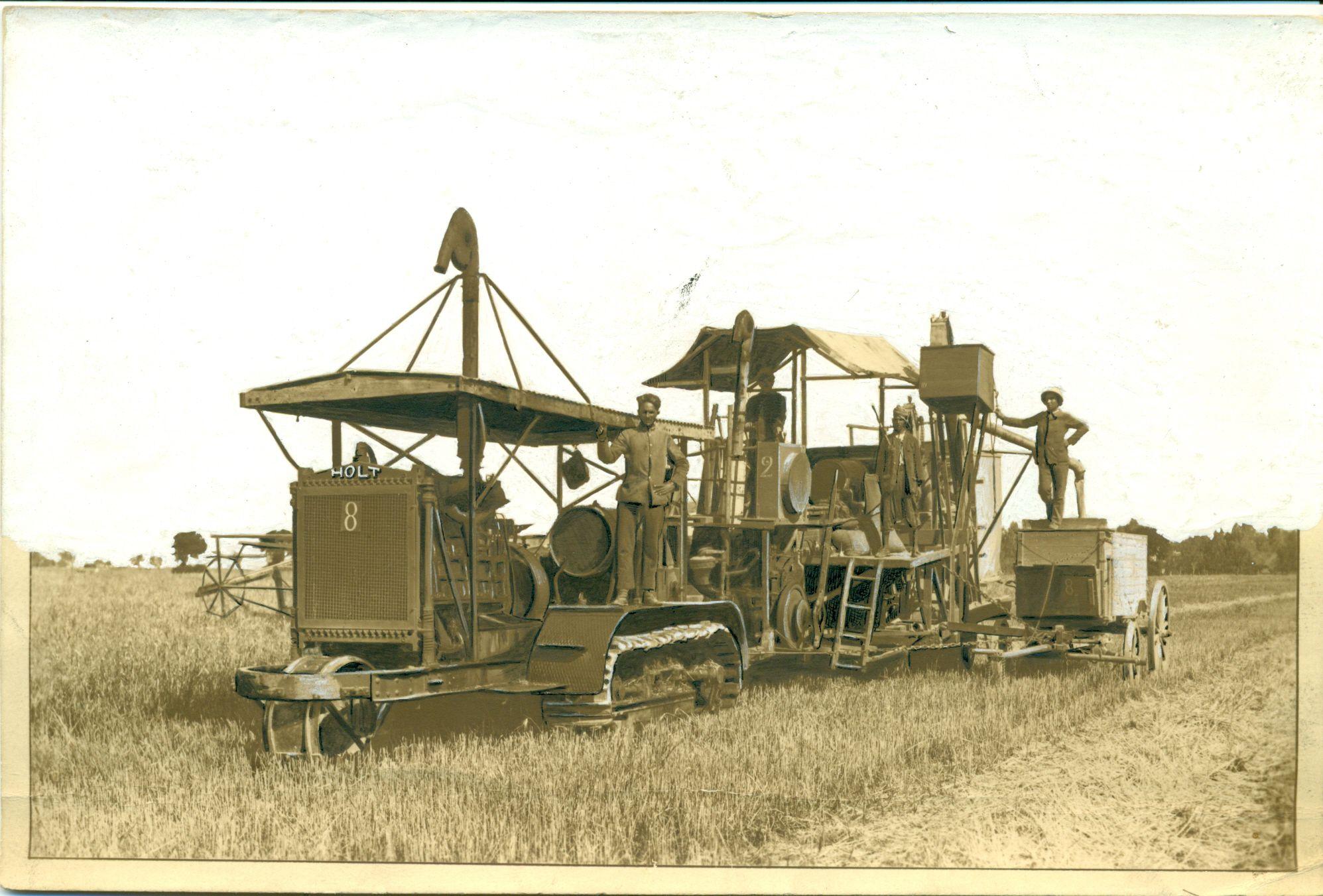 Tractor Holt 60 tirando de una cosechadora combinada Holt en el norte de África, 1912.