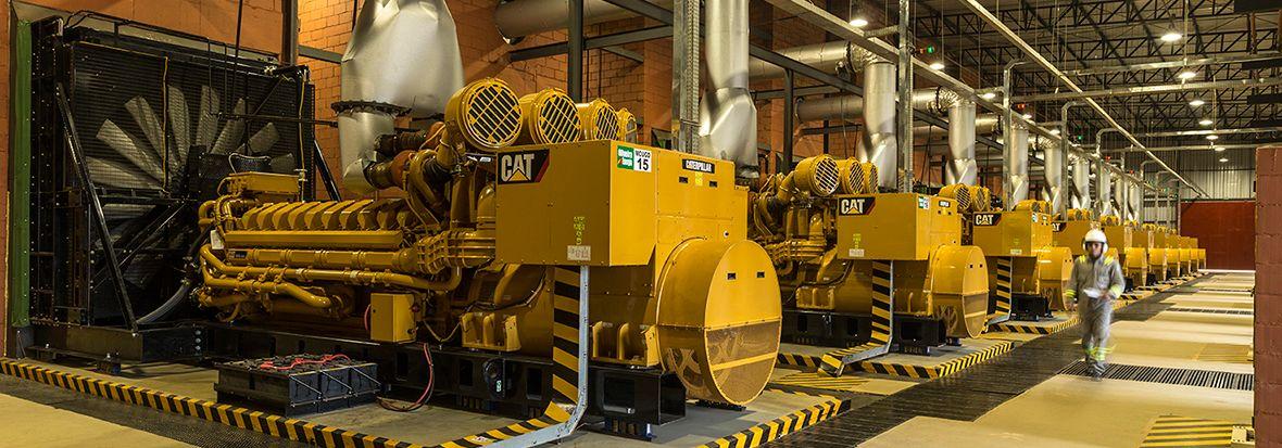 Cat Design Generator Rooms For Optimum Performance