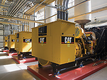 Cat Design Generator Rooms For Optimum Performance
