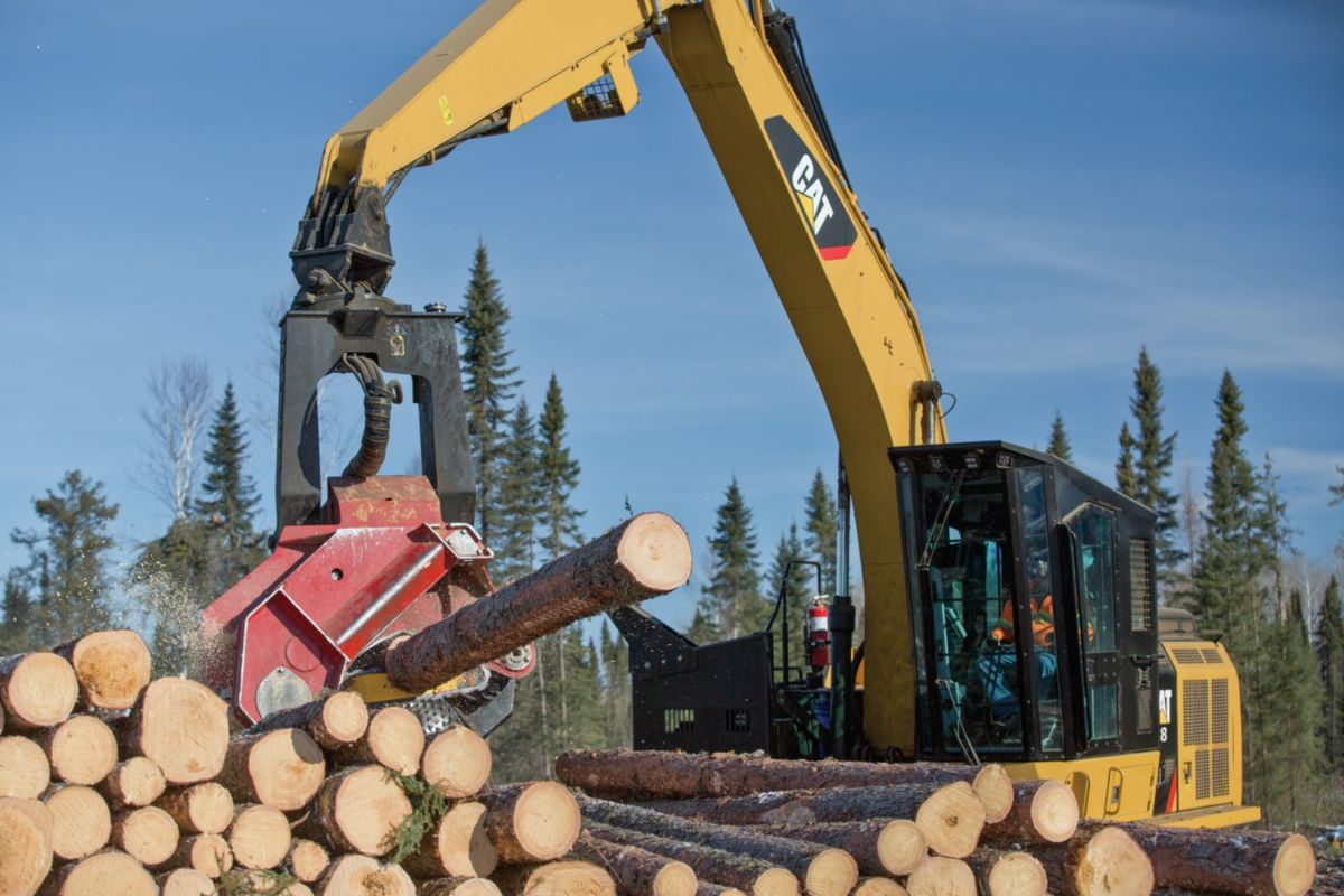 538 Forest Machine>