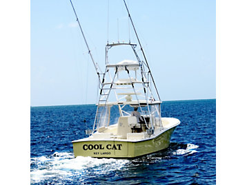 Cat | Captain Shares Why He Loves the New C7 1 Engines