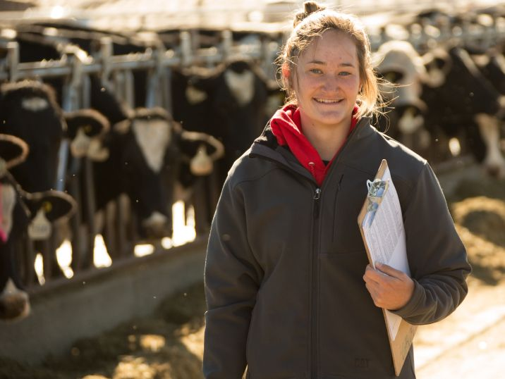 Girl in front of cows