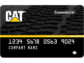 Rendering of a Cat Commercial Card (Revolving Account Card)