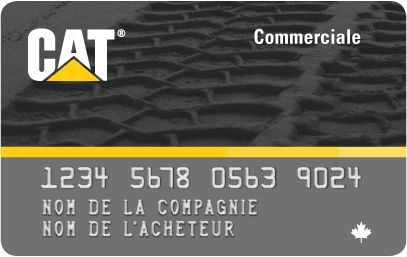 Carte commerciale de Cat (Carte de facturation)