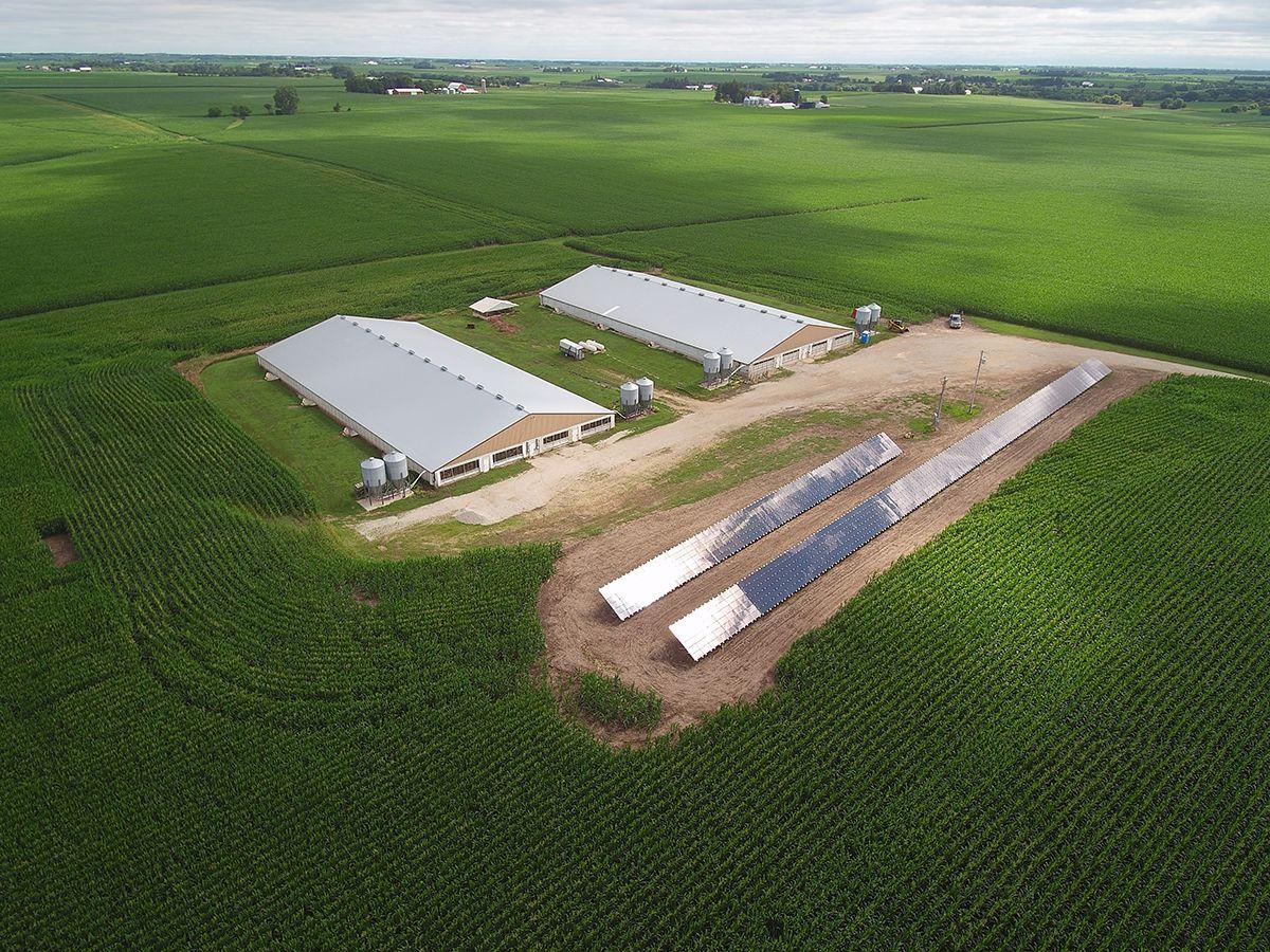 Cat® Solar Panels Reduce Overhead for Hog Farm