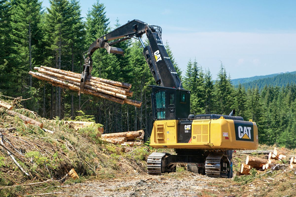 558 Forest Machine>