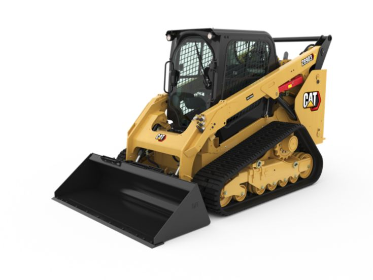 Skid Steer and Compact Track Loaders - 289D3