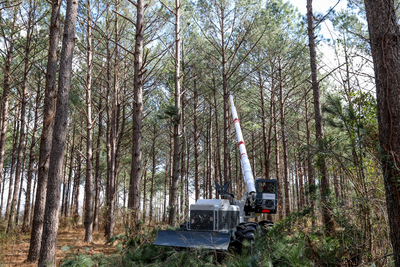 Kershaw® Vegetation Machines, Tree Trimmer