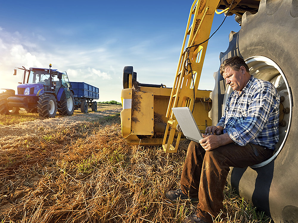 农业案例研究