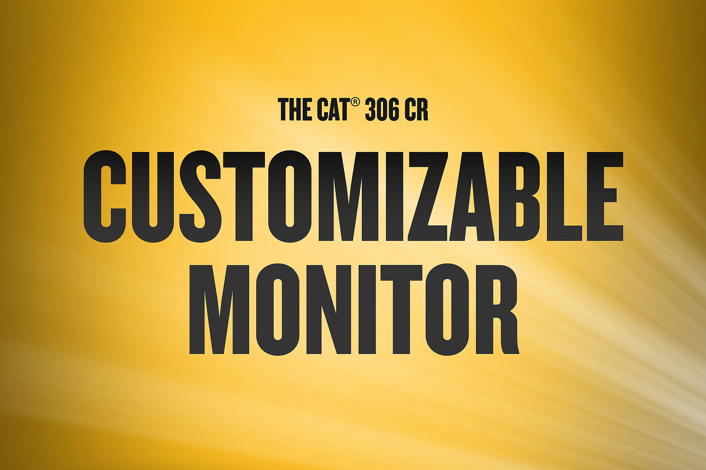 306 CR | Customizable Monitor