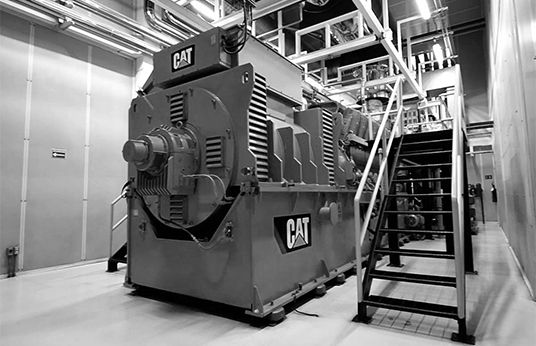 Flex Saves with Combined Heat and Power Plants