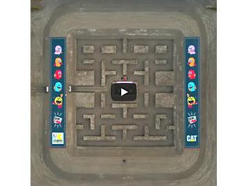 Cat Pacman Board