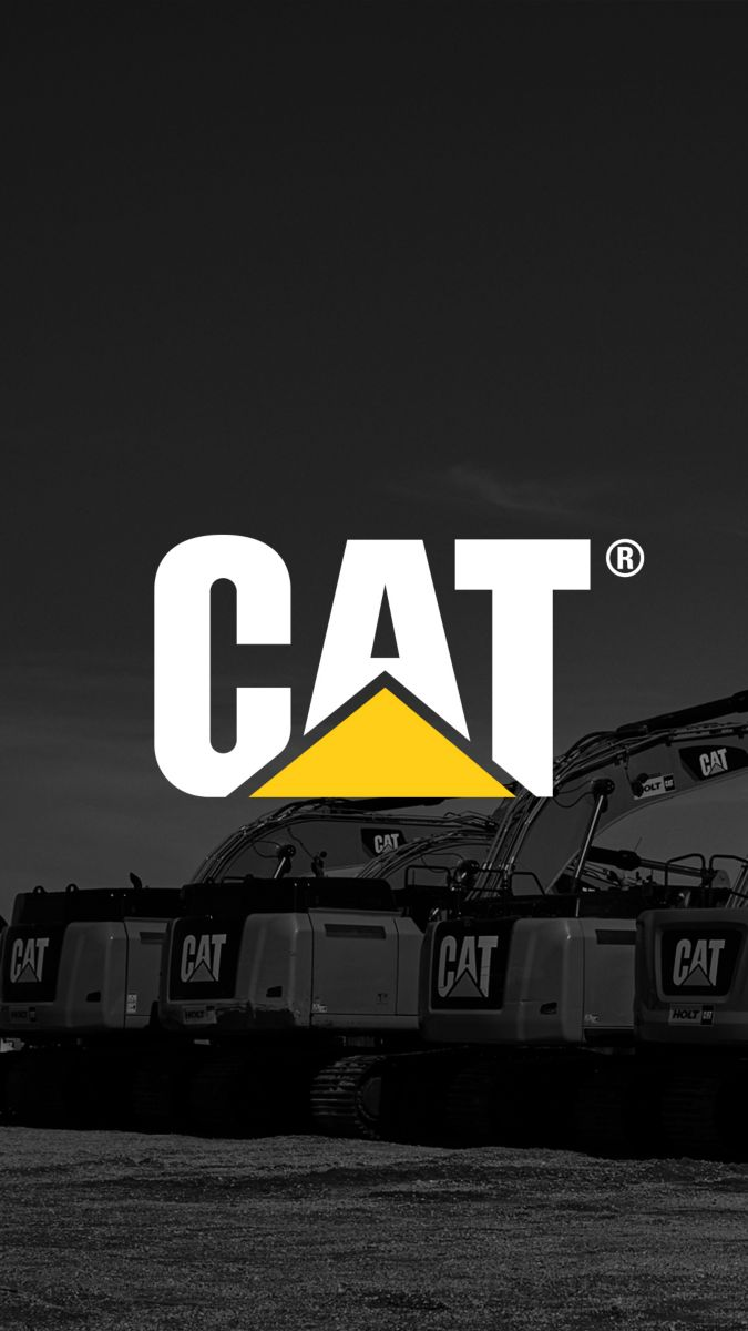 Cat Logo Instagram