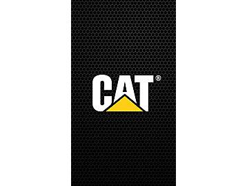 Cat Logo Black Background