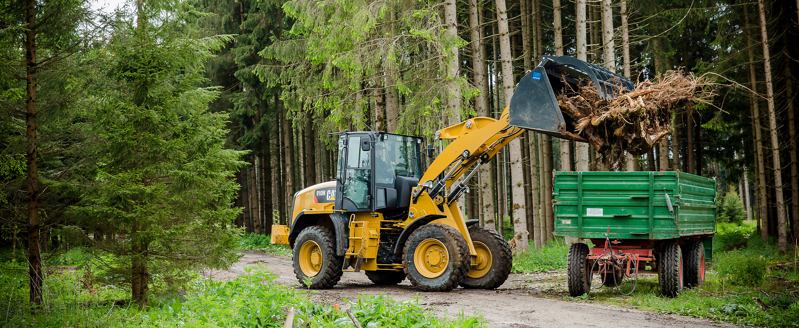 Forestry Technology