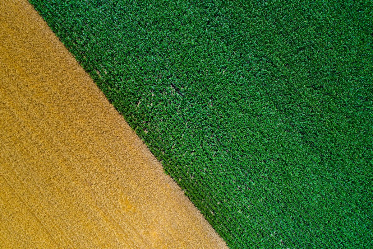 Sustainble farming and machinery