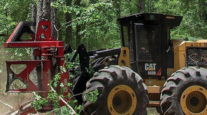 Fleet Meets Forestry Challenge of Six-Day Work Week
