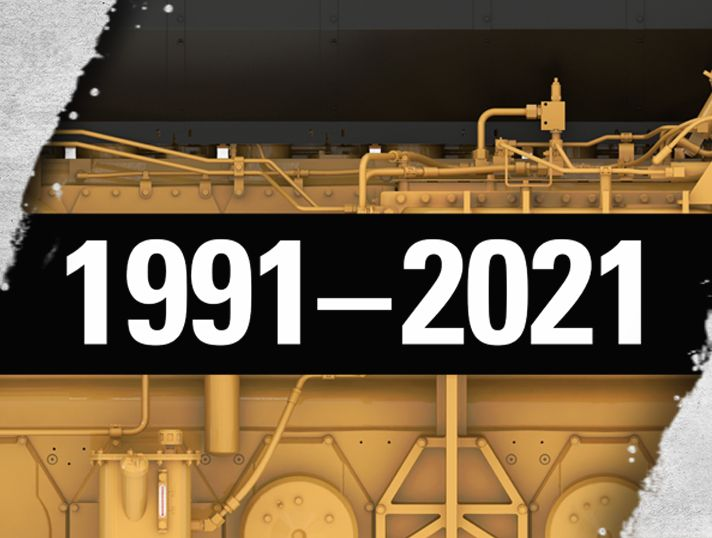 30 Years of Milestones