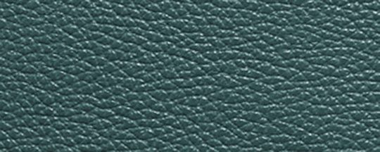 GM/Dark Turquoise
