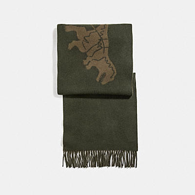 CASHMERE BICOLOR REXY AND CARRIAGE SCARF
