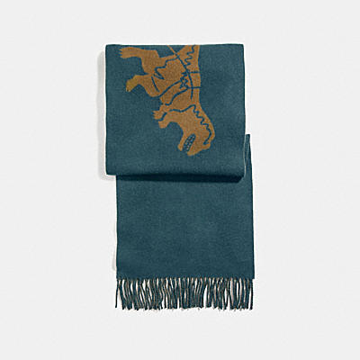 REXY AND CARRIAGE CASHMERE SCARF