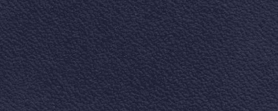 BP/深夜藍
