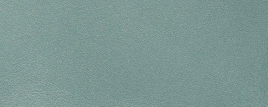 V5/鼠尾草綠色