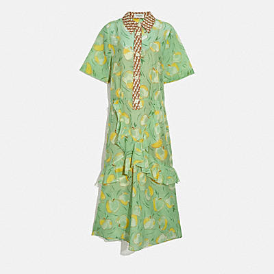 APPLE PRINT LONG RUFFLE SHIRT DRESS