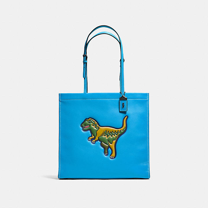 2b92ef77499b8 COACH Official Site Official page|REXY SKINNY TOTE IN GLOVETANNED LEATHER