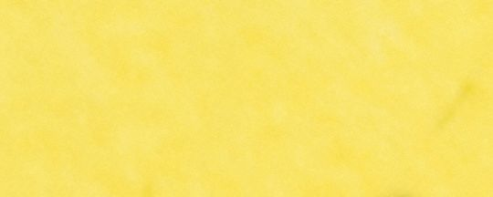 BK/Metallic Yellow