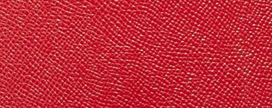 JI/Rexy Red