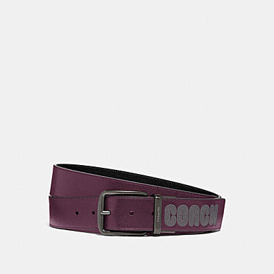 40mm Harness Belt In Leather Featuring Bubble Coach