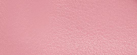 V5/True Pink