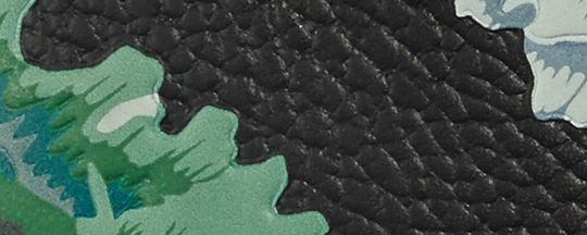 V5/Green Multi